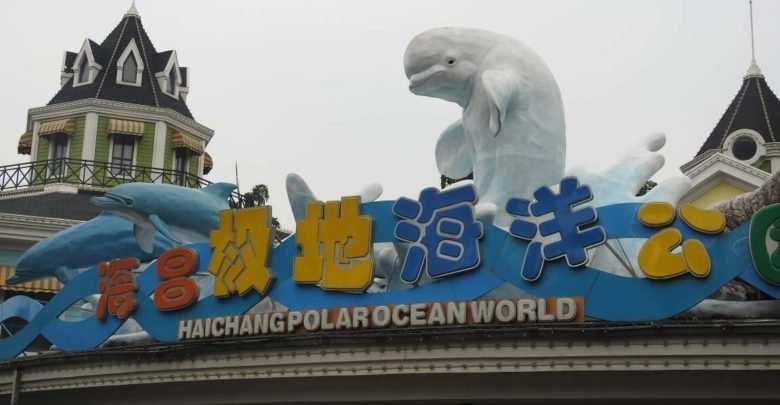 Polar Ocean World. Fot. Krzysztof Pająk