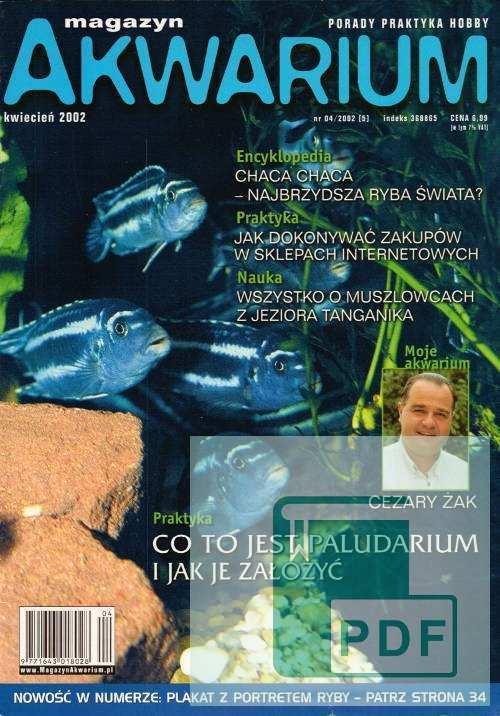 Okładka Magazyn Akwarium czasopismo 4/2002