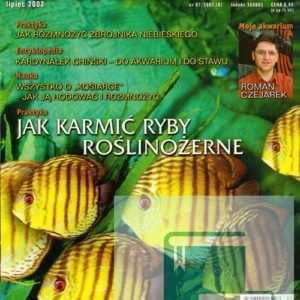 Okładka Magazyn Akwarium czasopismo 7/2002