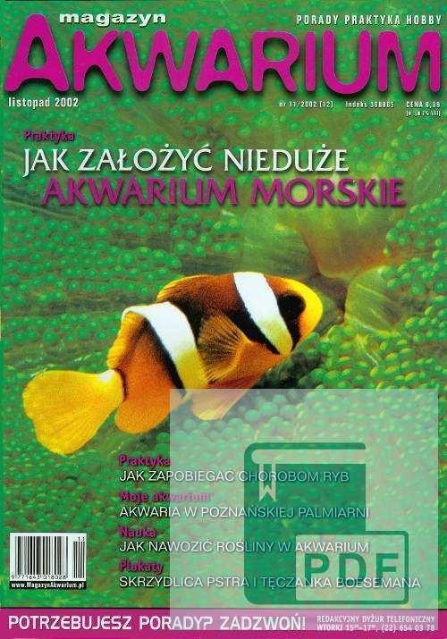 Okładka Magazyn Akwarium czasopismo 11/2002