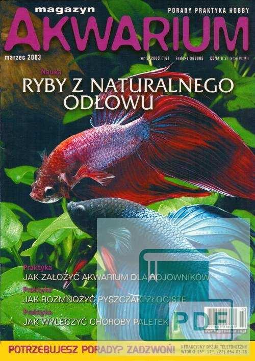 Okładka Magazyn Akwarium czasopismo 3/2003