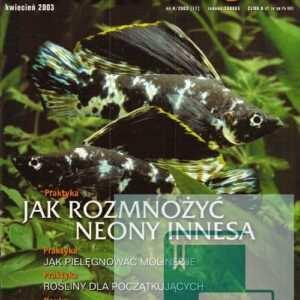 Okładka Magazyn Akwarium czasopismo 4/2003
