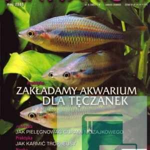 Okładka Magazyn Akwarium czasopismo 5/2003