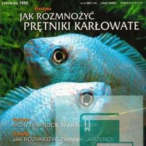 Okładka Magazyn Akwarium czasopismo 6/2003