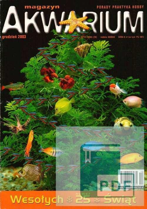 Okładka Magazyn Akwarium czasopismo 12/2003