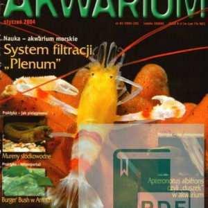 Okładka Magazyn Akwarium czasopismo 1/2004