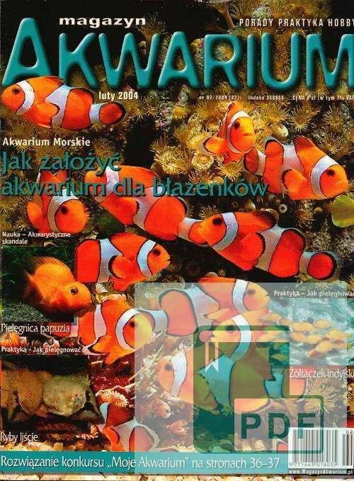 Okładka Magazyn Akwarium czasopismo 2/2004