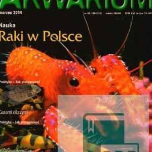Okładka Magazyn Akwarium czasopismo 3/2004