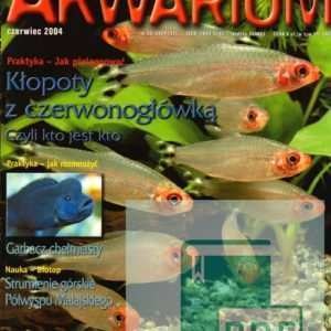 Okładka Magazyn Akwarium czasopismo 6/2004