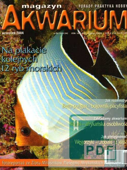 Okładka Magazyn Akwarium czasopismo 9/2004