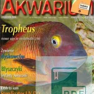 Okładka Magazyn Akwarium czasopismo 12/2004