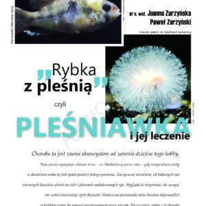 choroby ryb pleśniawka
