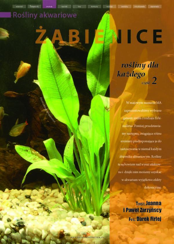 żabienice rośliny akwariowe