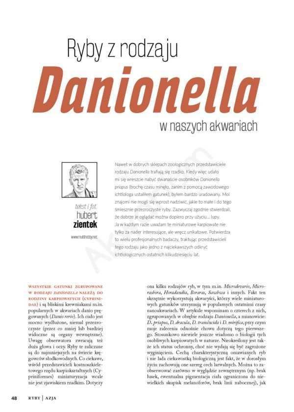 Danionella
