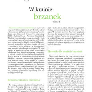 brzanki