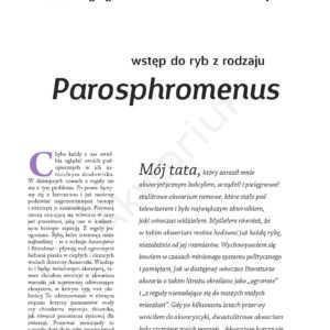 Parosphromenus