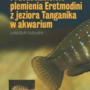Akwarium Towarzyskie I Gatunkowe Strona 4 Z 10 Akwarystyka
