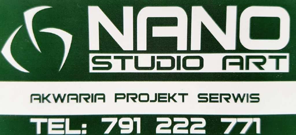 Nano studio Art Golik