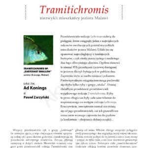 Tramitichromis