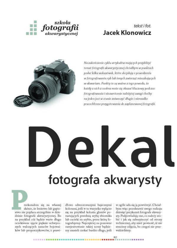 fotografia akwarystyczna
