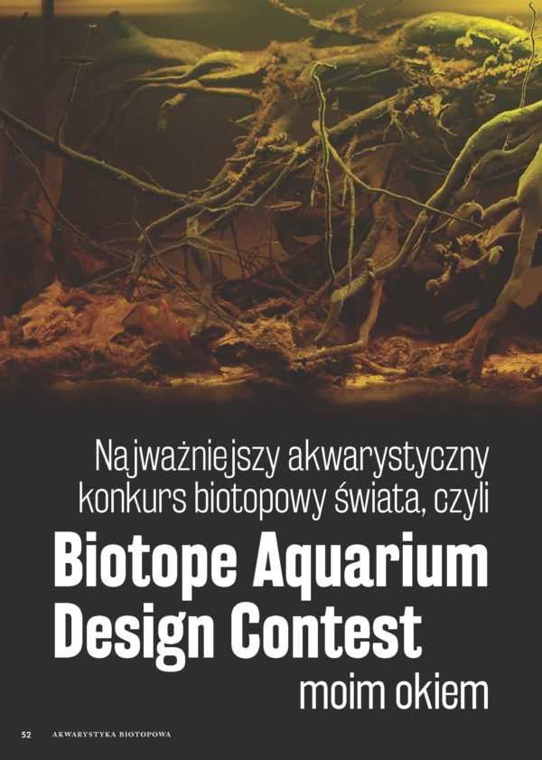 Biotope Aquarium Design Contest
