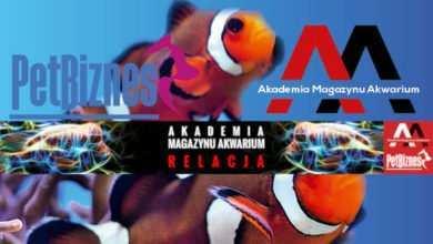 Akademia Magazynu Akwarium