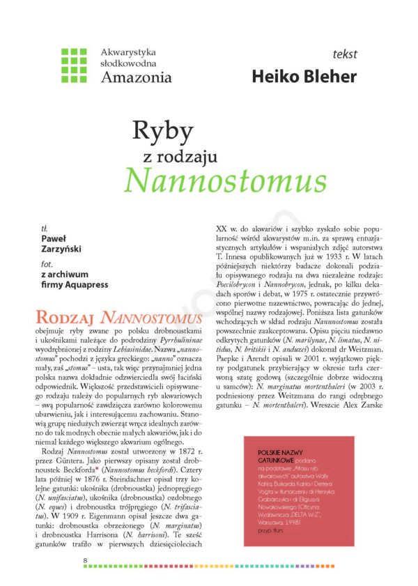 Nannostomus