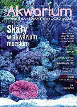 Magazyn Akwarium czasopismo nr 4/2019