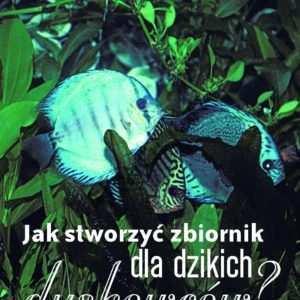 dzikie dyskowce