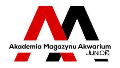 Photo of Nowa odsłona inicjatywy Akwariuszy w ramach Akademii Magazynu Akwarium – Junior