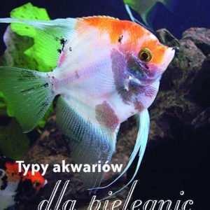 typy akwariów