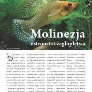 molinezja