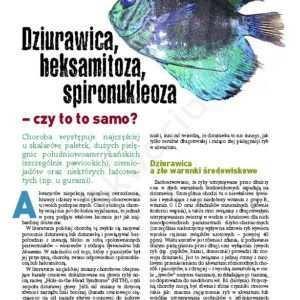 choroby ryb akwariowych objawy
