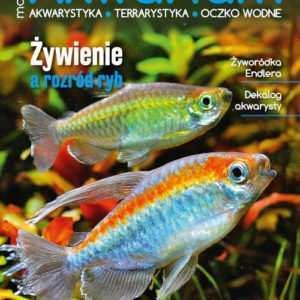 Magazyn Akwarium czasopismo 6/2016