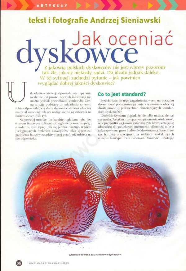 dyskowce