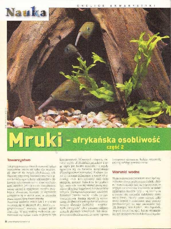 mruki