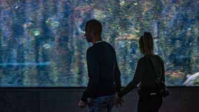 Photo of Oceanarium Międzyzdroje pod patronatem medialnym Magazynu Akwarium