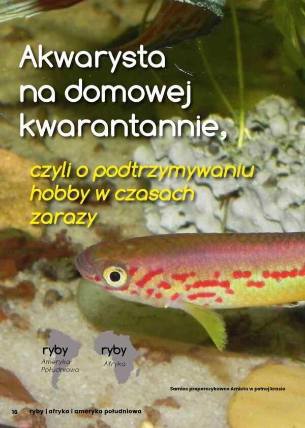 Hodowla ryb akwariowych
