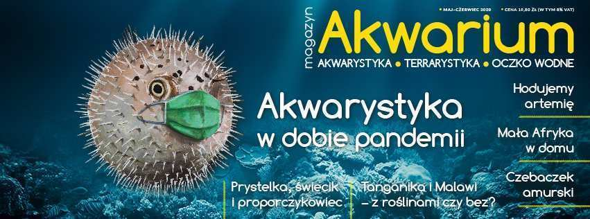 Magazyn Akwarium czasopismo 3/2020