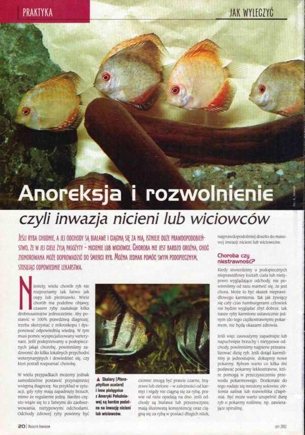 choroby ryb akwariowych