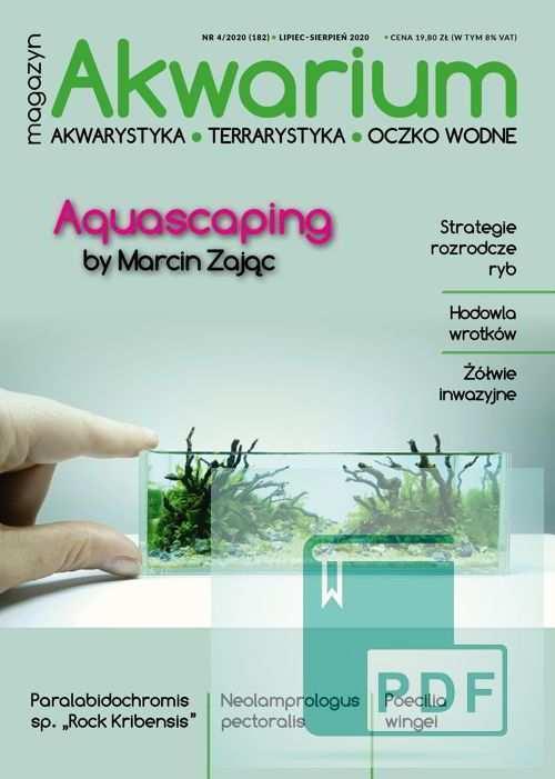 Magazyn Akwarium czasopismo 4/2020
