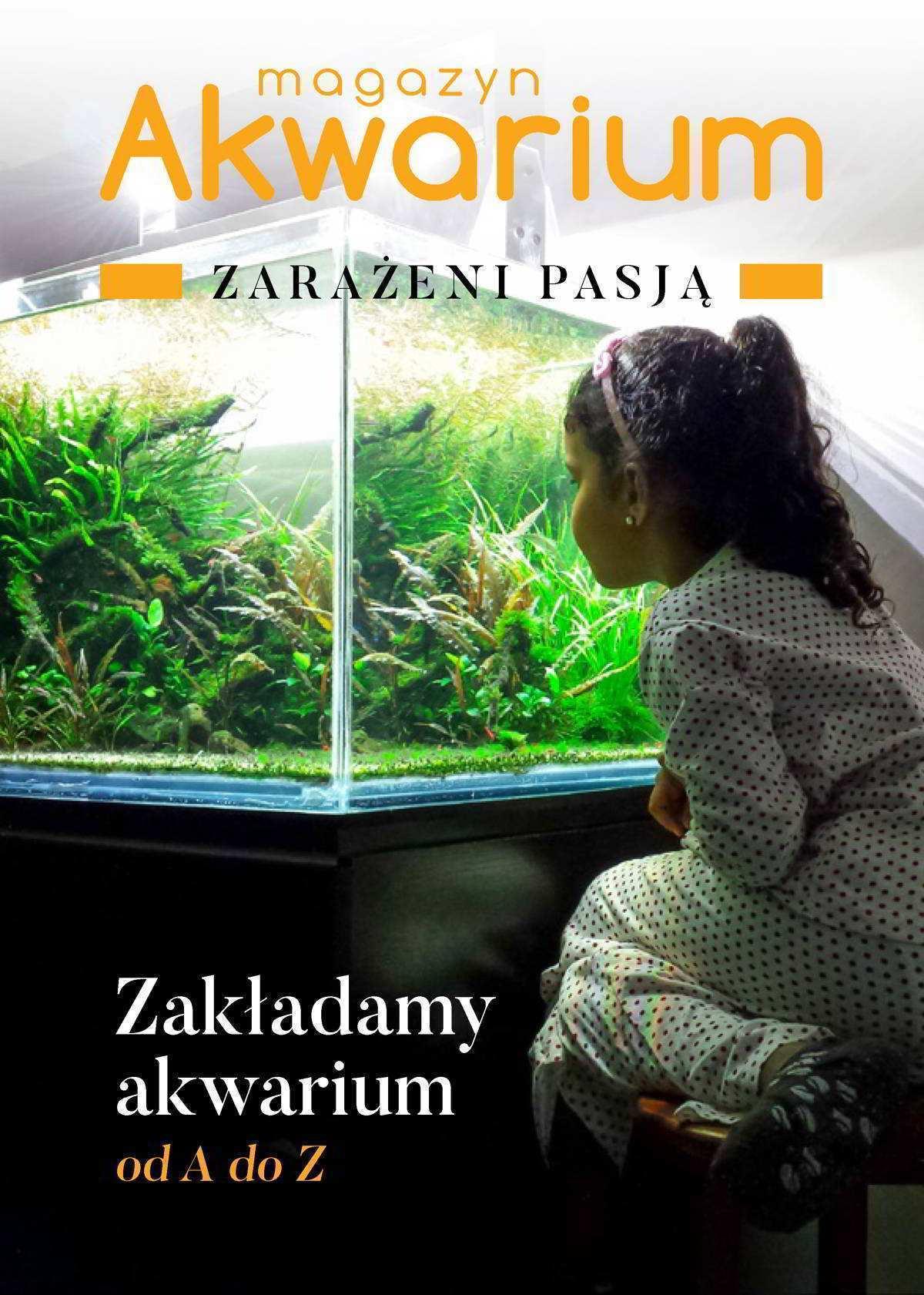 Zakładamy akwarium od A do Z