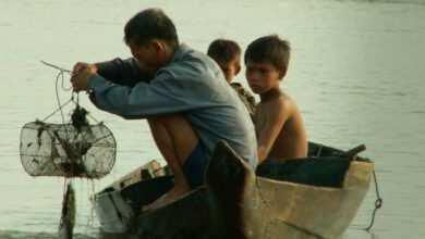 Photo of Między nami akwarystami – ryby z odłowu czy z hodowli?