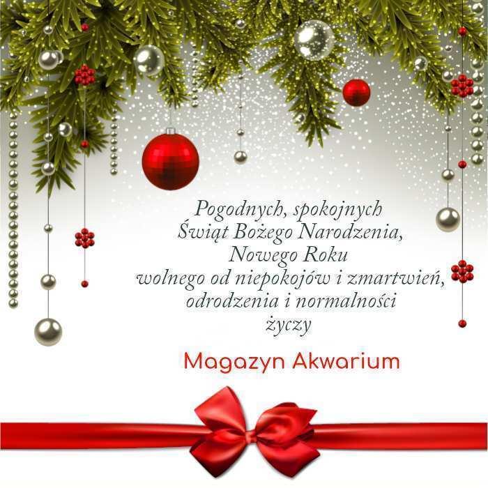 Magazyn Akwarium czasopismo Święta 2020