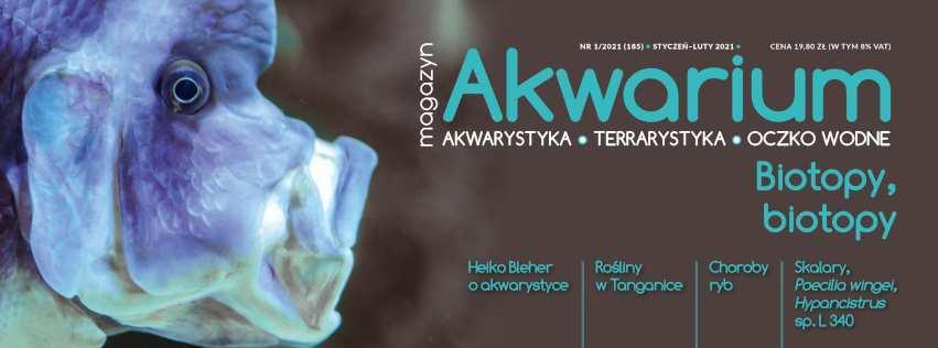 Magazyn Akwarium czasopismo 1/2021