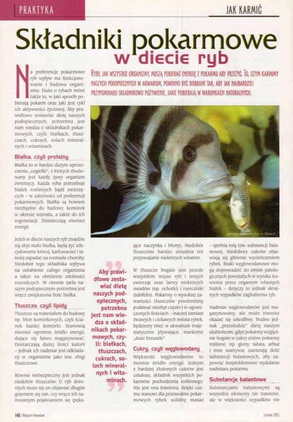 karmienie ryb żywienie ryb