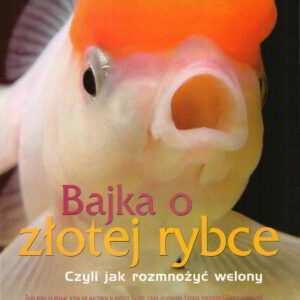 rozmnażanie welonków złota rybka