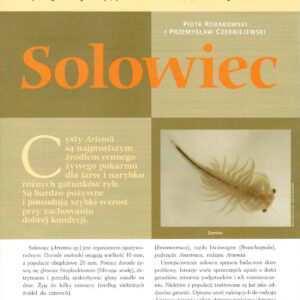 artemia solowiec rozwielitki dafnie