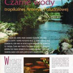 czrne wody akwarium biotopowe środowisko naturalne