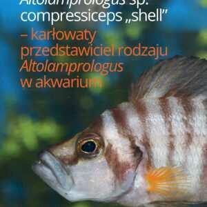 Altolamprologus
